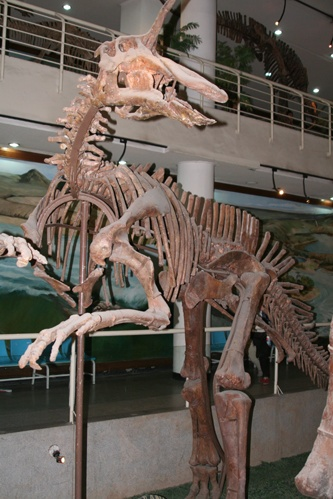 Theropod, the real McCoy